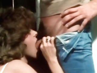 Křivka pornohvězdy corina